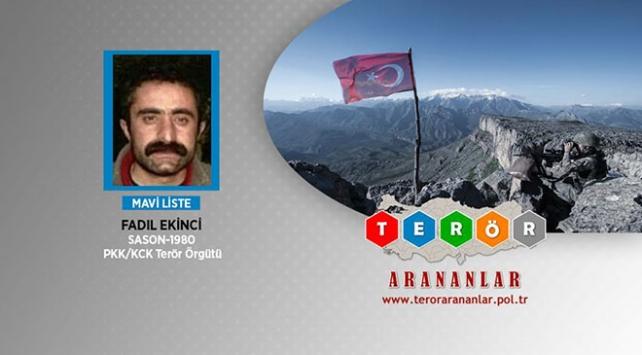 MİT'ten PKK'ya nokta operasyon