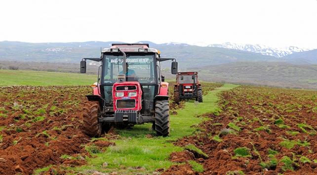 Çiftçilere yüzde 75 hibeyle verilen tohumlar toprakla buluştu