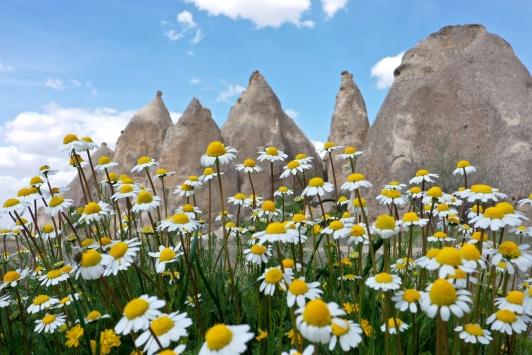 Kapadokyanın ilkbahar manzarası