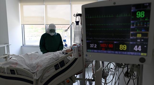 Türkiyede koronavirüsü atlatan kişi sayısı 13 bin 430 oldu