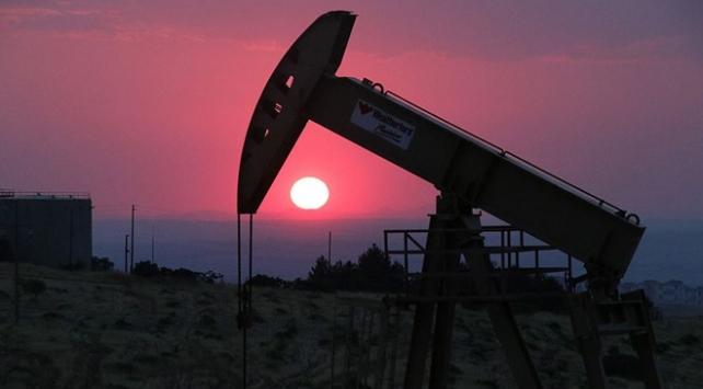 Petrol fiyatları dibe vurdu