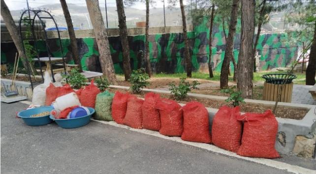16 çuval salep soğanı topladı, 73 bin 747 lira ceza aldı
