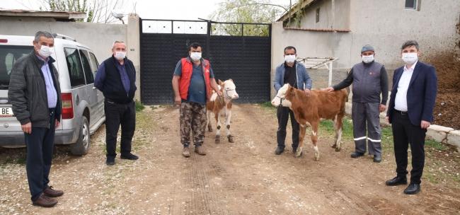 Milli Dayanışma Kampanyasına geçim kaynakları hayvanlarıyla katıldılar