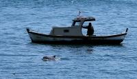 Denizde gürültü azaldı yunuslar ortaya çıktı