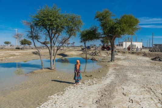 İranlı milletvekili: Sistan ve Belucistan halkının yüzde 74ü açlık sınırının altında yaşıyor