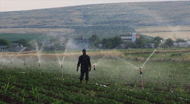 Tarım Krediden bitki korumada dışa bağımlılığı azaltacak yatırım