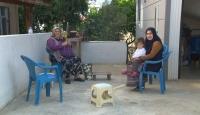 Koronavirüs günlüğü - Adanalılar en çok neyi özledi?