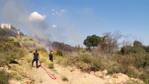 Kocaelide makilik alanda çıkan yangın kontrol altına alındı