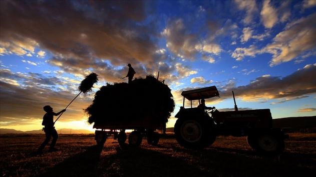 Tarım Krediden 2,5 milyar liralık ürün alım hedefi
