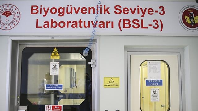 Türkiye'nin aşı için hazırladığı anti serum çalışmaları görüntülendi