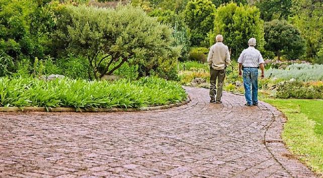 Yaşlılara egzersiz önerisi: 10 dakika yürüyüş ile başlayın
