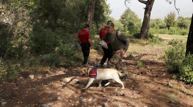 Muğlada kaybolan dağcı iz takip köpeği ile aranıyor