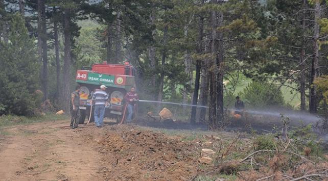 Uşaktaki orman yangını kontrol altına alındı