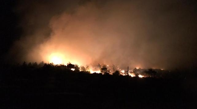 Mersinde orman yangını: Evler boşaltıldı