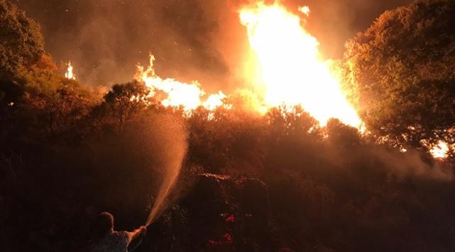 Antalyada üç ayrı yangın