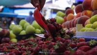 Uzak Doğu'ya tarım ürünü ihracatındaki engeller kalkıyor