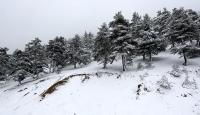 Karadeniz'de mayıs ayında kar sürprizi