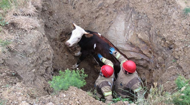 Gebeydi çukura düştü, itfaiye ekipleri kurtardı