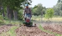 Kırklareli'nde tarım işçileri bayramı çalışarak geçiriyor