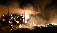 Aydın'da samanlık yangını