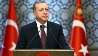 Cumhurbaşkanı Erdoğan'dan Dila Koyurga hakkında suç duyurusu