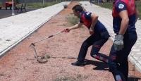 Çocuk parkındaki 2 metrelik yılan paniğe neden oldu