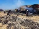 Kamyon alev aldı, 8 ton buğday zarar gördü