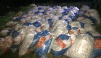 Çuvallar içinde kaçak avlanmış 15 ton inci kefali ele geçirildi