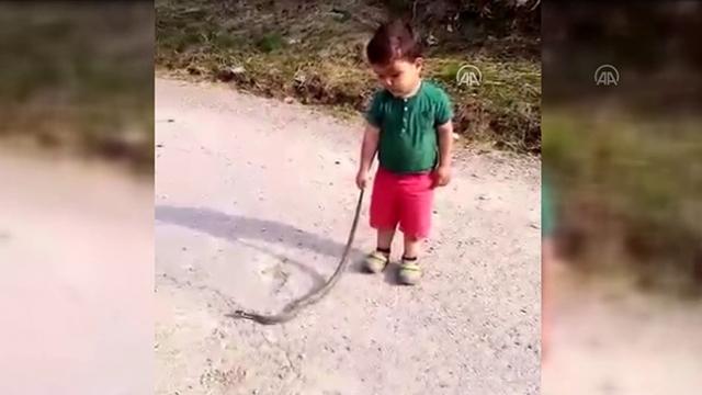 Küçük Eymen'in 1,5 metrelik yılanla tehlikeli oyunu