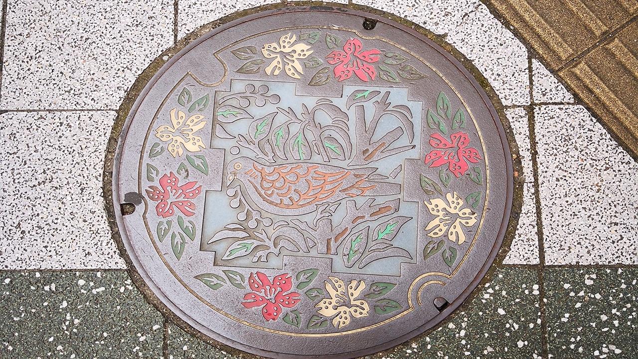 Japonya'nın sanatsal rögar kapakları