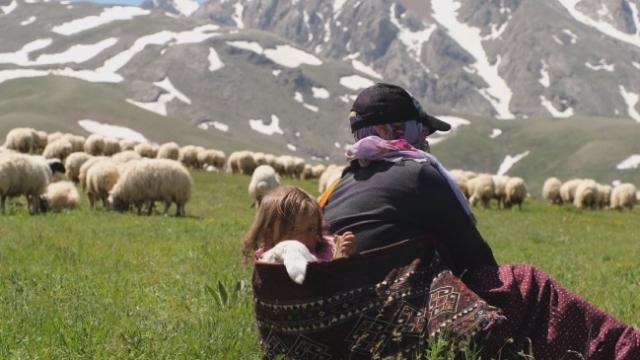Minik Şirin'in kuzuyla yolculuğu