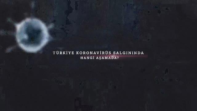 Türkiye koronavirüs salgınında hangi aşamada?