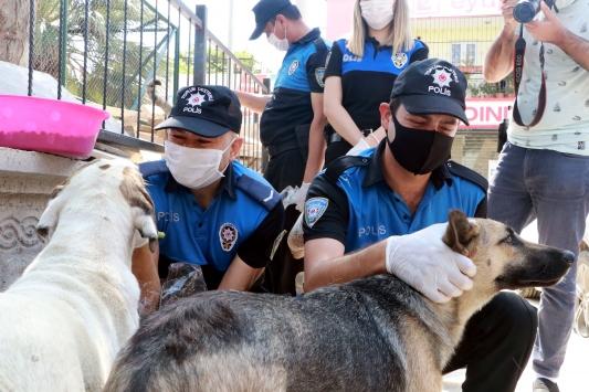 Adana polisi sokak hayvanlarını besledi