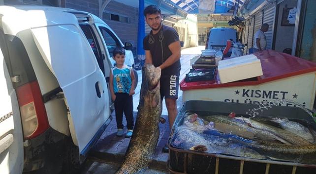 Gölde yakaladığı 6 yayın balığını 21 bin liraya sattı