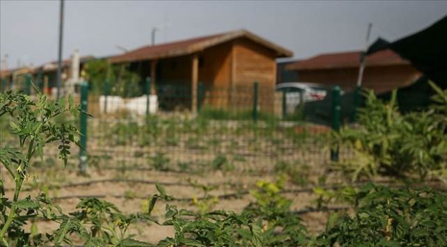 Tarım arazilerine kurulan hobi bahçelerindeki yapılar yıkılacak