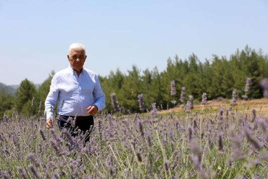 Muğlada üreticiler aromatik bitki fidanı dağıtıldı