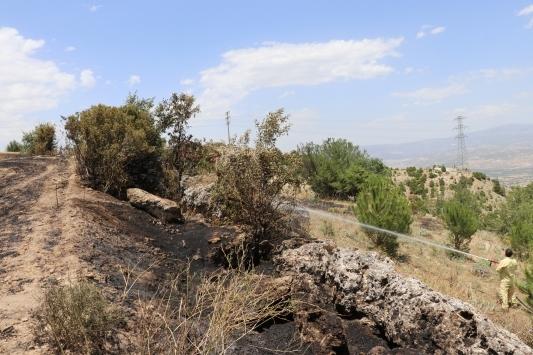 Denizlide çıkan yangında 80 dekar alandaki ekinler yandı