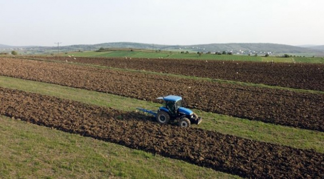 Türkiyenin en büyük tarım işletmesinde hasat bitmeden ekim başladı