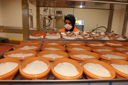 Meyve kurutma ve dondurma tesisi çiftçilere umut oldu