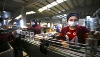 Gıda dışı sanayi ve üretim tesisleriyle ilgili alınması gereken önlemler