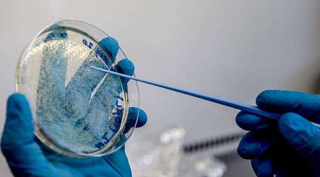 Çinde COVID-19 aşı adayının klinik deneylerinde 2. aşamaya geçildi