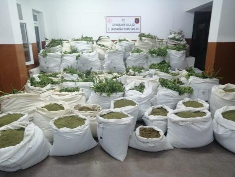 Diyarbakırda 7 milyon 571 bin kök Hint keneviri ile 1 ton 600 kilogram esrar ele geçirildi