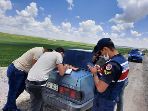 Sivasta kaçak şahin avlayan 2 kişiye 8 bin lira ceza kesildi