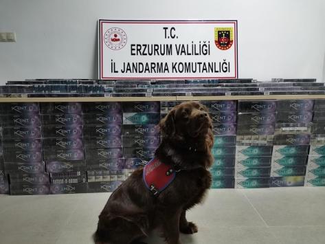 Erzurumda 5 bin 200 paket kaçak sigara ele geçirildi