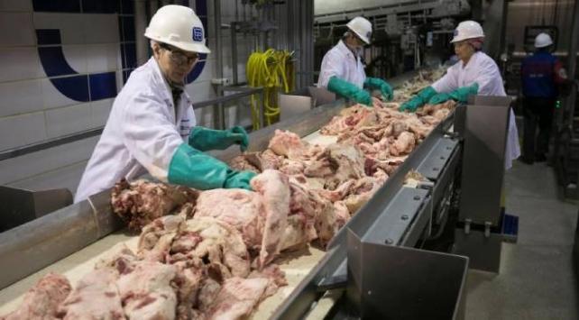 Mezbahalar ve çiftliklerde koronavirüs vakaları artıyor