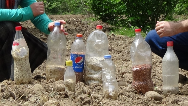 Ereğlide tescil ettirdiği ata tohumlarını üretip 80 ile gönderiyor