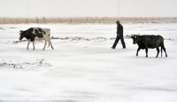Çin'de Kış Kendini Hissettirdi