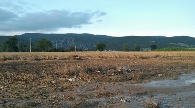 Samsunda 500 dönüm ekili arazi zarar gördü