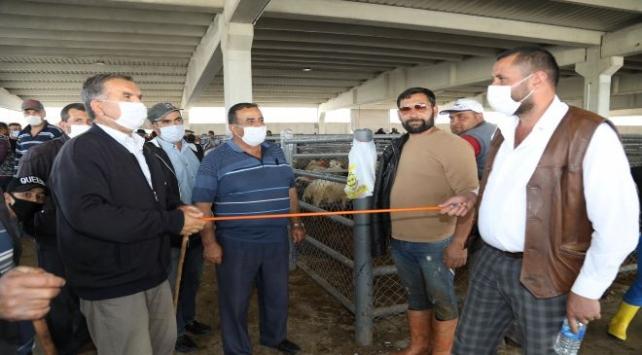 Kurban Bayramında hayvan satış ve kesim yerleri için alınan önlemler