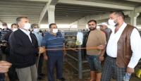 Kurban Bayramı'nda hayvan satış ve kesim yerleri için alınan önlemler